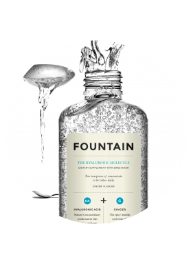 Fountain The Hyaluronic Molecule 240ml
