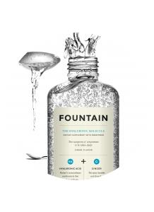 Fountain The Hyaluronic Molecule 240ml