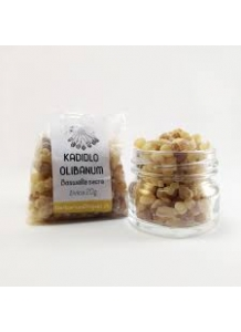 Indian Frankincense, Boswellia serrata - glass tube 15g